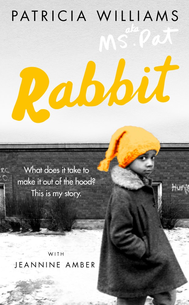 Rabbit cover_mini